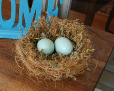 How to make your own bird's nest for pennies