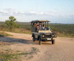 Open vehicle game drives in Kruger National Park