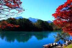 裏磐梯五色沼 (毘沙門沼)の紅葉と幸せ