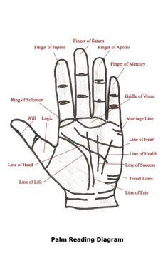 Learn basics of palmistry and how the chart is interpreted with this easy to understand palm-reading guide which contains information to help interpret the secrets that lie hidden within the palms of your hands. Wiccan, Magick, Witchcraft, Tarot, Palm Reading Charts, Palm Reading Lines, Palm Lines, Pseudo Science, Book Of Shadows