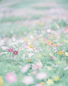 You & I   Atsushi Korome   Flickr
