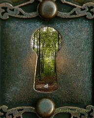 through the door to the woods