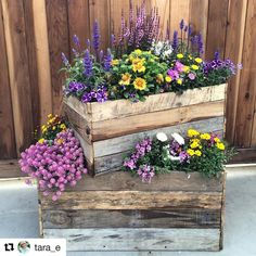 Where would you put this in your garden? Tara Embleton with ・・・ A simple but eye-catching raised bed idea at the Danziger… Where would you put this in your garden? Tara Embleton with ・・・ A simple but eye-catching raised bed idea at the Danziger… Raised Vegetable Gardens, Raised Garden Beds, Raised Beds, Balcony Flowers, Deco Floral, Traditional Landscape, Garden Planters, Garden Projects, Garden Ideas