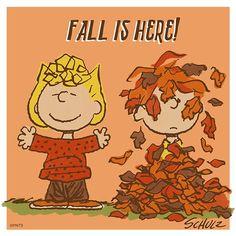 Fall is here 🍁 Peanuts Cartoon, Peanuts Gang, Peanuts Comics, Charlie Brown Characters, Snoopy Quotes, Peanuts Quotes, Fall Preschool, Snoopy Love, Fall Is Here