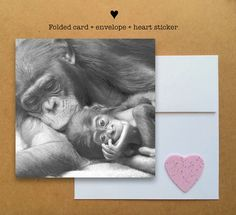 Blank photo card printed on recycled paper // shared with love // profits support clean water projects // mother and baby gorilla hugging (©Connie Lemperle)