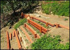 Terraced Hillside Garden - Photo No.1