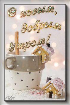 Lets Celebrate, Good Morning, Pictures, Roses, Bom Dia, Photos, Buen Dia, Bonjour, Buongiorno