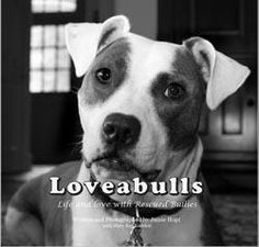 I ♥ Pitbulls!.. its not the breed of animal that makes it mean.. it the breed of owner.. Bad owners = bad dogs no matter what kind