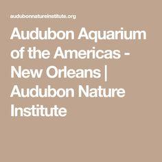 Audubon Aquarium of the Americas - New Orleans   Audubon Nature Institute