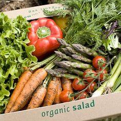 Fresh Salad from  #riverfordorganics