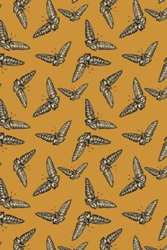 Timorous Beasties Wallcoverings - Devine Moth