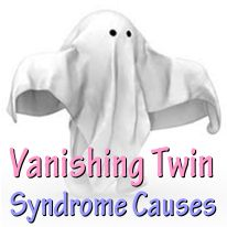 What is The Cause of Vanishing Twin Syndrome?