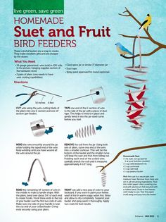 A one page magazine article with step-by-step instructions for making a birdfeeder out of wire.
