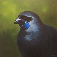 Kokako Oil on Canvas New Zealand Landscape, Board Ideas, New Art, Art Boards, Oil On Canvas, Watercolor Paintings, Creatures, Birds, Sewing