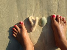 The coral and sea shell on the lovely sands of the Andaman Beach