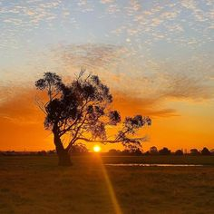 ele (@eat.live.escape) • Instagram photos and videos Beautiful Sunrise, Sunrises, Australia, Celestial, Photo And Video, Live, Eat, Videos, Photos