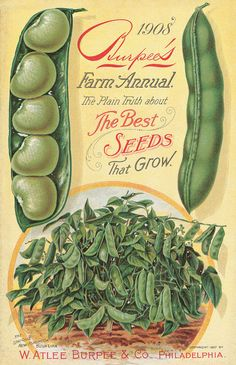 Burpee's farm annual : the plain truth about the best seeds that grow Images Vintage, Vintage Artwork, Vintage Prints, Vintage Pictures, Vintage Labels, Vintage Ads, Vintage Posters, Vintage Food, Vintage Ephemera