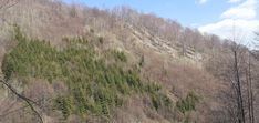#ProRomania Country Roads, Mountains, Nature, Travel, Outdoor, Outdoors, Naturaleza, Viajes, Destinations