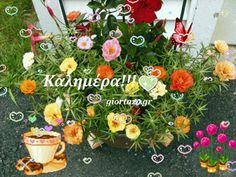 Καλημέρα! Εικόνες gif.....giortazo.gr - Giortazo.gr God Is Good Quotes, Best Quotes, Good Morning Cards, Floral Wreath, Wreaths, Decor, Floral Crown, Decoration, Best Quotes Ever