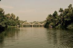 Backwater, Cochin, Kerela, India