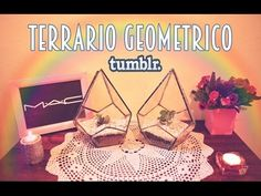 DIY TERRARIO GEOMETRICO // GEOMETRIC GLASS TERRARIUMS