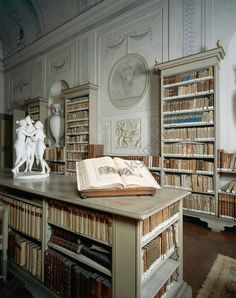 akg-images - Italy, Mantua, Palazzo d'Arco, Library with neoclassical furniture and 16th-century heritage objects