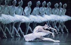 Swan Lake performed by the Royal Ballet at the Royal Opera House, London 2011