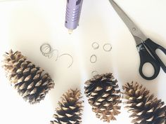 firstly,      secondly, i've noticed my painted pinecones post  has blown up all over pinterest    and i was hoping to properly make a dedi...