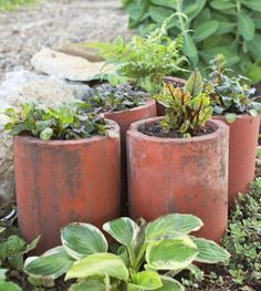Drainage pipe 25 Creative Garden Containers | Midwest Living