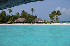 Deutscher Blogartikel über die Malediven <3 #maldives #malediven #luxury #island #palms #paradise #constancehalaveli Dream Come True, Island, Travel, Paradise On Earth, The Maldives, Destinations, Traveling, Viajes, Trips
