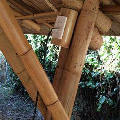 Bamboo Poles, Bamboo Art, Bamboo Crafts, Parasitic Architecture, Bamboo Architecture, Bamboo House Design, Bamboo Building, Bamboo Structure, Bamboo Construction