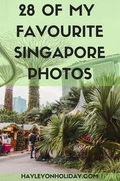 28 of my favourite Singapore photos. Looking for photo locations, Instagrammable places, or interesting things to do in Singapore? Then check out my photo guide on Hayley on Holiday today!  visit Singapore | Singapore travel tips | Singapore photo locations | things to do in Singapore | #Singapore #Asia #travel #travelphotography
