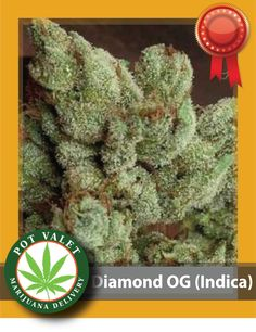 Do you struggle with chronic pain and stress? If yes, Diamond OG Strain is perfect for a lazy and relaxed weekend. It also helps to reduce pain.  It gives out a strong smoke and has an earthy, sweet aftertaste Now, what are you waiting for? Call now for Medical Marijuana delivery today. Want to know more? Call us at 1800-357-1314 #MedicalMarijuana #Flowers#Indica #DiamondOG #CureStress #CureAnxiety#SawtelleLosAngeles #LosAngeles #Curepain #OrderPotOnline #MarijuanaDelivery