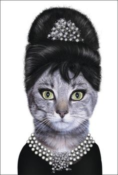 Audrey Hepburn Cat love it! Crazy Cat Lady, Crazy Cats, I Love Cats, Cool Cats, Cat People, Here Kitty Kitty, Famous Faces, Audrey Hepburn, Pet Portraits