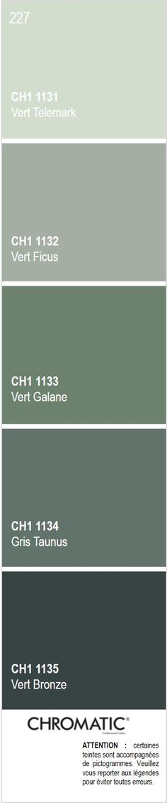 Previous Next Discover all the shades of gray colored in the CHROMATIC® color chart, a source of inspiration to finalize your decorative projects. Here is page 227 of Vert Ficus, …
