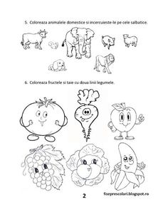 FISE de evaluare initiala - Clasa 0 - Pregatitoare MEM - Stiinte ale naturii | Fise de lucru - gradinita Kindergarten Worksheets, Worksheets For Kids, Preschool Activities, Wine Cork Crafts, Paper Trail, Design Case, Cross Stitch Embroidery, Little Boys, Body Parts