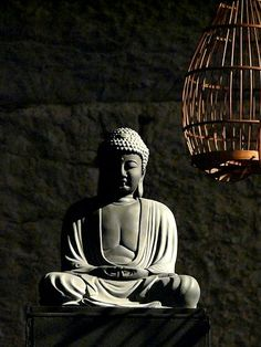 "Robert Orgera, ""Photograph of a statue of the Buddha, in Provocative Proximity to a Cage,"" from Wikimedia Commons."
