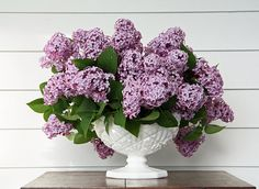 breathtaking lilacs. they always bring back memories of sneakily picking a few on the church grounds after meetings :)