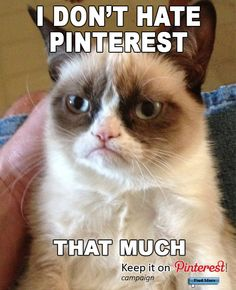 I don't hate Pinterest... that much! Grumpy Cat