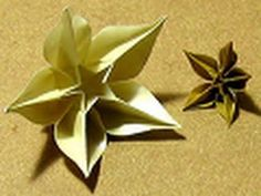 Hermosa flor de carambola en origami
