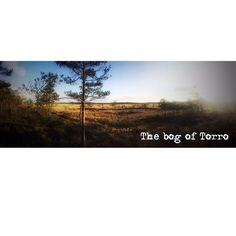 Torro. Suomen syvin suo. 12m pahimmillaan. Melko diippiä. #torro #torronsuo #t #fb