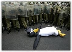 AWWWW!!! Poor Penguin!
