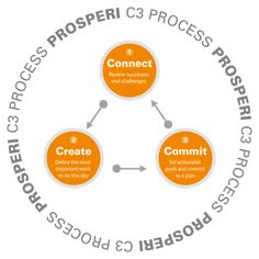 International Coach Academy  Coaching Model: Prosperi C3 Process  By: Renee Erlich  Leadership Coach, UNITED STATES