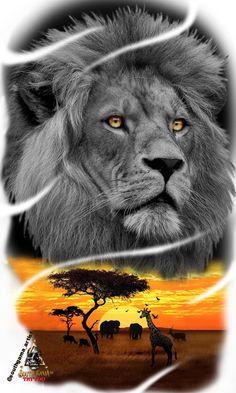 Lion, Africa: @southgama_artist Lion And Lioness Tattoo, Lion Head Tattoos, Leo Tattoos, Animal Sleeve Tattoo, Lion Tattoo Sleeves, Animal Tattoos, Half Sleeve Tattoos Drawings, Lion Africa, Africa Tattoos