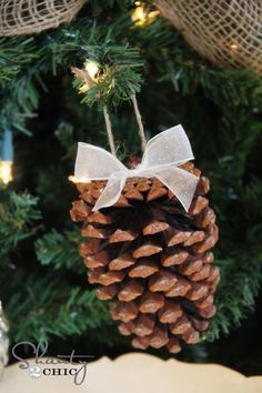 Pinecone Ornaments with organza ribbon and burlap twine.  http://www.nashvillewraps.com/bows/pre-tied-bows/c-002143.html