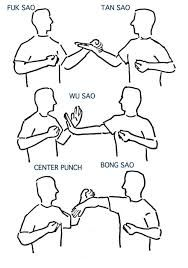Image result for wing-chun-forms