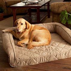 Memory Foam Bolster Dog Bed