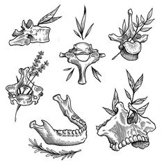 Looks like Wednesday might be the last time we tattoo for a while. Here is some more flash that's available before Wednesday at Thanks for looking and As always, no need to over pay. Come see us at Black Clover. Text to book. Line Art Tattoos, Tattoo Flash Art, Love Tattoos, Body Art Tattoos, Small Tattoos, Tattoo Sketches, Tattoo Drawings, Art Sketches, Tattoo Portfolio