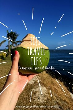 If you are thinking about visiting Fiji anytime soon, I have a few tips for you to keep in mind. We traveled to Denarau Island and stayed at The Westin Resort & Spa.