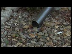 Controlling stormwater runoff is one of the ways that YOU can personally help prevent water pollution.